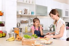 Housewife with her daughter preparing dinner stock image
