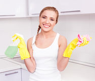 Housewife at home Stock Images