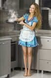 Housewife in the kitchen Stock Image