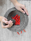 Housewife preparing spicy cooking. Women hand prepare cooking spicy food Stock Photography