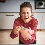 Housewife putting money into piggy bank after shoppi. Happy young housewife putting money into piggy bank after shopping on local market Stock Images