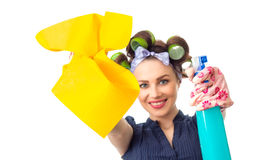 Housewife with rag Royalty Free Stock Photos