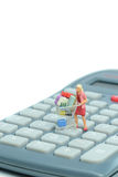 Housewife shopping on calculator Royalty Free Stock Images