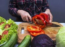Housewife slicing sweet pepper for salad Stock Photo