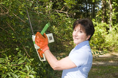 Housewife trimming bushes hedge trimmer Royalty Free Stock Images