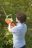 Housewife trimming bushes hedge trimmer Royalty Free Stock Photo