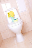 Housework equipment in toilet Stock Photography