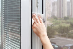 Houseworker clean plastic pvc window with detergent. Stock Image