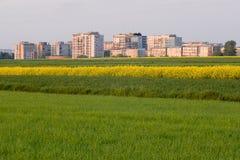 Housing estate. The housing estate in gliwice city,Poland Stock Photo