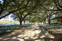 Houston Discovery green park in downtown Stock Photo