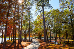 Houston Hermann park conservancy. Track at autumn in Texas stock photos