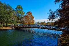 Houston Hermann park Mcgovern lake. Houston Hermann park conservancy Mcgovern lake at autumn in Texas stock images