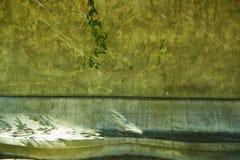 Houston Hermann parka conservancy obrazy stock