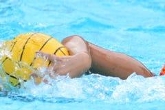 HOUSTON, LE TEXAS, LE 24 SEPTEMBRE 2016 : Natation de joueur de polo d'eau avec la boule Image stock
