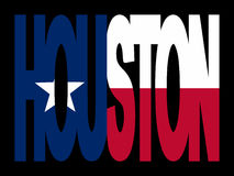 Houston med Texanflaggan royaltyfri illustrationer