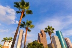 Houston Skyline North view in Texas US. Houston Skyline North view palm trees in Texas US USA stock photography