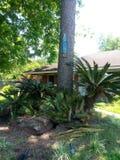 Houston,Tx Area Homes Stylish Address Number Art royalty free stock image