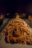 HOUSTON USA - JANUARI 12, 2017: Fantastiska mammor som slås in med några trasor av den forntida Egypten i nationellt museum av Royaltyfri Foto