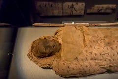 HOUSTON USA - JANUARI 12, 2017: Stäng sig upp av en fantastisk mamma som slås in med några trasor av den forntida Egypten i medbo Arkivfoto