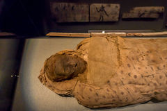 HOUSTON, USA - JANUARY 12, 2017: Close up of an amazing mummy wrapped with some rags of the Ancient Egypt in National. Museum of Natural Science in Orlando stock photo