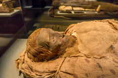 HOUSTON, USA - JANUARY 12, 2017: Close up of an amazing mummy wrapped with some rags of the Ancient Egypt in National. Museum of Natural Science in Orlando Stock Images