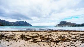 Hout海湾看法在开普敦半岛的西北部分的南非的西开普省省的 免版税库存照片