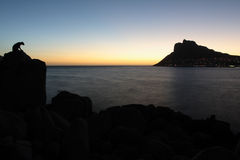 Hout Bay. South Africa, with a statue of a leopard in the foreground Royalty Free Stock Photo