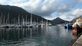 Hout Bay harbor, South Africa stock footage