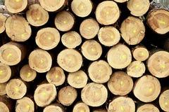 hout dat omhoog voor het branden in een houtyard wordt gestapeld stock foto