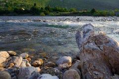 Hout door rivier Stock Foto