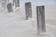 Hout in het zand Stock Afbeeldingen