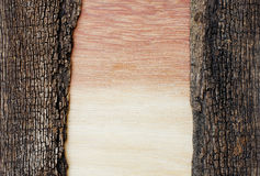 Hout met kleurengradatie op oude houten Stock Foto's