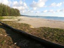 Hout op het strand met Blauwe Hemel Royalty-vrije Stock Afbeeldingen