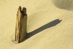Hout op strand Royalty-vrije Stock Foto