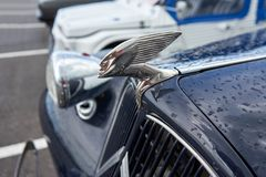 Houtaud/Franche Comté/France/June 2018 : Hood Ornament of The M royalty free stock images