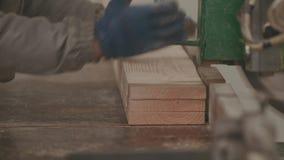 Houtbewerkingsfabriek, Zaagmolen stock videobeelden