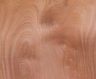 Houten Abstract Natuurlijk de Korrelpatroon van het Textuurvernisje voor Backgroun Royalty-vrije Stock Afbeeldingen