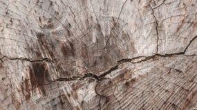 Houten achtergrond, houten korrel, gedetailleerde textuurachtergrond Royalty-vrije Stock Foto's