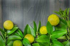 Houten achtergrond met verse kalk en groene bladeren Royalty-vrije Stock Foto