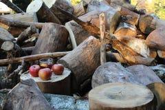 Houten appel en T-stuk stock foto's