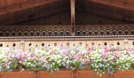 Houten Balkon met Bloeiende Kleurrijke Petunia Royalty-vrije Stock Foto's