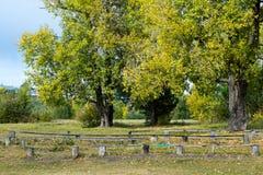 Houten bank in de herfstpark in September Stock Afbeelding