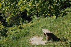 Houten bank in de zomerbos stock foto