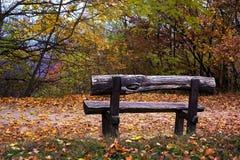 Houten bank in een de herfstbos Royalty-vrije Stock Afbeelding