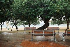 Houten bank onder boom bij regenachtige dag in het strand van Shek o Stock Foto