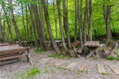 Houten banken en lijsten in een bos Stock Afbeeldingen