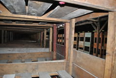 Houten bedden in barak, concentratiekamp Birkenau Stock Afbeelding