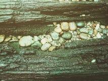 Houten bederf met stenen stock foto