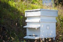 Houten bijenkorf royalty-vrije stock afbeelding