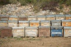 (Houten) bijenkorven, Spanje Stock Afbeeldingen